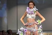 Fashionshow. Ilustrační foto