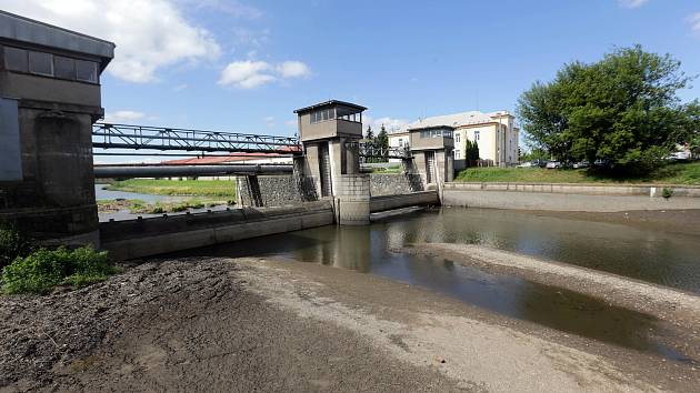 Tradiční letní srážka vody na řece Moravě v Olomouci.