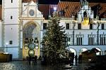 Vánoční strom v Olomouci. 29. listopadu 2020