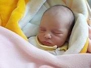 Anna Palík, Šternberk, narozena 14. září ve Šternberku, míra 49 cm, 3090 g