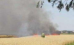 Požár pšenice v Křelově-Břuchotíně na Olomoucku