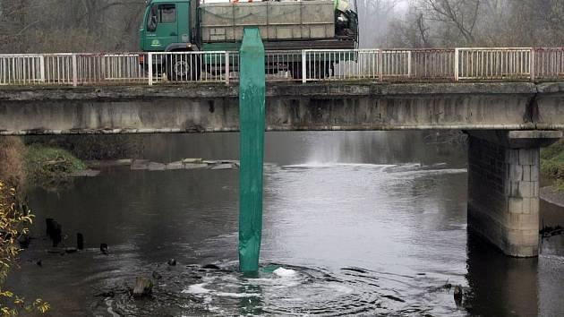 Rybáři vysazují ryby do řeky Moravy