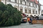 18.11. 2018. Vánoční strom dorazil na Horní náměstí v Olomouci
