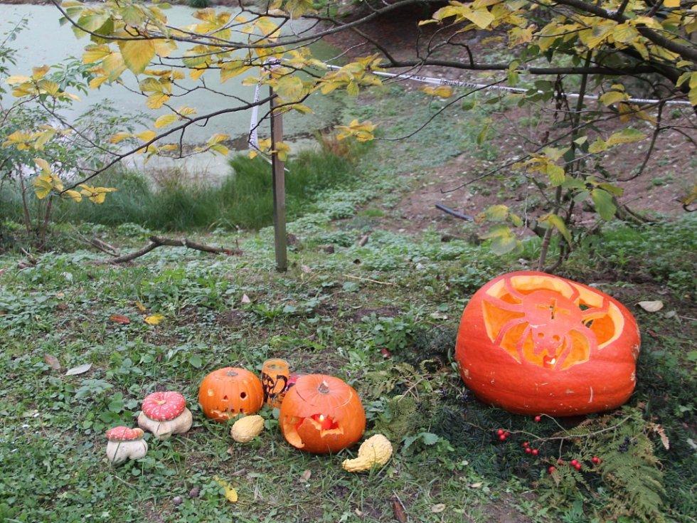 Olomoucká zoologická zahrada na Svatém Kopečku uspořádala v sobotu oblíbený Večer duchů.