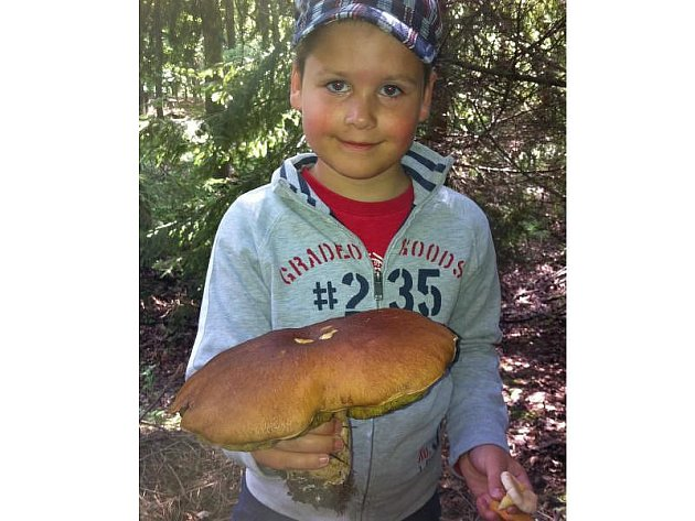 Šimon Rousek našel v sobotu 23. července triumfální hřib pravý o váze 1,15 kilogramu v katastru Nové Vsi.