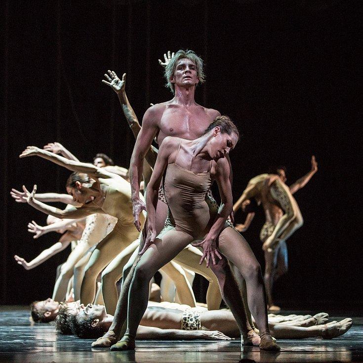 V Timeless (Svěcení jara), Balet Národního divadla v Praze. S Nikolou Márovou.