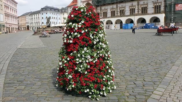 Květinové pyramidy na Horním náměstí v Olomouci.