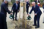 Prezident Zeman v zámeckém parku v Čechách pod Kosířem zasadil strom