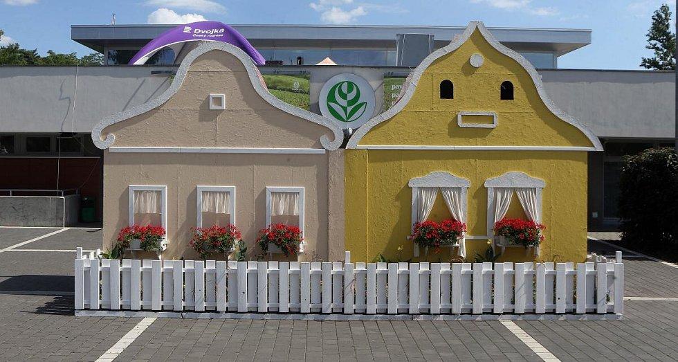 Letní Flora Olomouc 2019