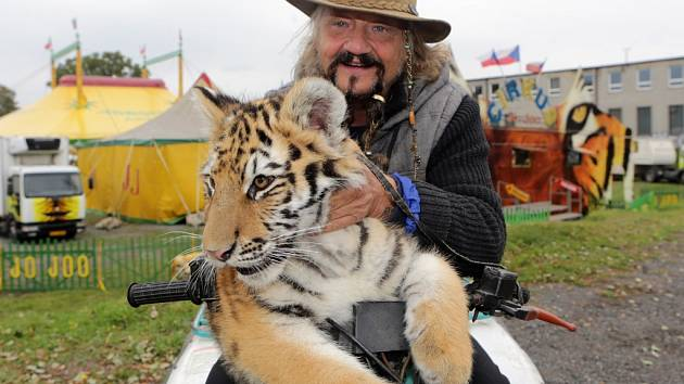 Principál Jaromír Joo s tygrem.