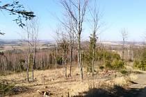 Procházka přírodou v oblasti Pohořany.