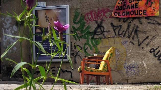 """Vysazením jinanů a květinového záhonu """"pohádkové bytosti"""" oživily proluku ve Ztracené ulici v Olomouci"""