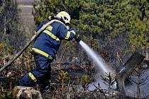 Hasiči zasahují u požáru lesa v Olbramicích