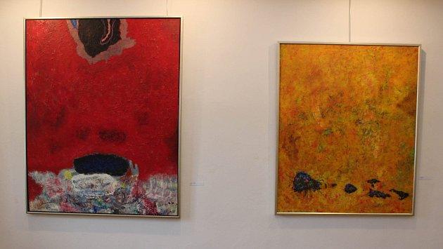 Výstava Jana Kanyzy. Ilustrační foto