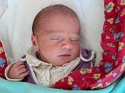 Tobias Linhart, Lukavice, narozen 26. září ve Šternberku, míra 50 cm, váha 3390 g