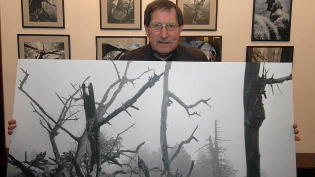 Galgonek na výstavě prezentuje také beskydský prales.