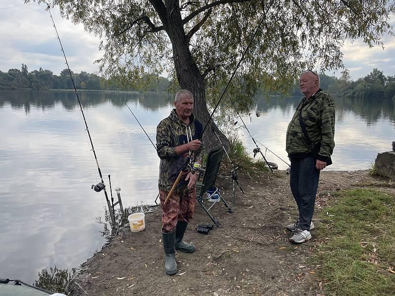 Poděbrady vydaly doposud největšího sumce. K jezeru ráno přicházeli gratulanti, 27. září 2021