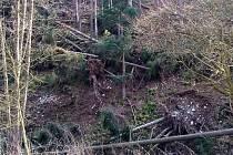 Pěkný pohled není po posledních vichřicích na části vyhledávaného Terezského údolí, kde leží smrky po obou stranách Šumice.