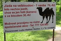 Zoo Zlín-Lešná: poutač na projížďku na velbloudovi