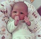 Pavel Solava, Troubelice, narozen 2. března v Olomouci, míra 51 cm, váha 3380 g