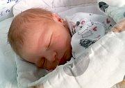 Tobiáš Přerovský, Olomouc, narozen 2. ledna v Olomouci, míra 48 cm, váha 2990 g