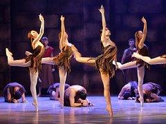 Baletní soubor Moravského divadla Olomouc. Ilustrační foto