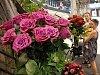 Odstartovala Letní Flora, hlavní expozici vládne střídmost