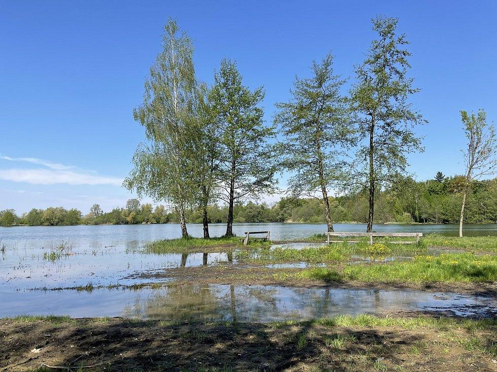 Hladina vody na olomouckých Poděbradech se zvedla až o 1,5 metru, 12. května 2021
