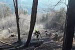 Hasiči během pondělí 6. dubna likvidovali požáry na devíti místech Olomouckého kraje. Požár u Dětřichova.
