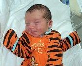Dominik Jatzek, Litovel, narozen 21. listopadu ve Šternberku, míra 51 cm, váha 3640 g