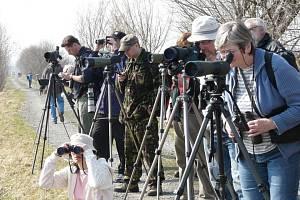 Exkurze na Hradeckém rybníku