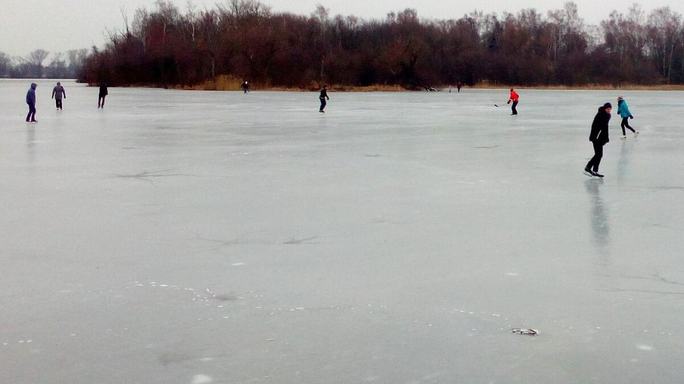 Poděbrady 27. února 2018. Silné mrazy sevřely i větší část jezera. Ze severní strany dosahuje led až ke břehu, čehož využívají desítky bruslařů