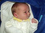 David Šterbák, Bruntál, narozen 26. listopadu ve Šternberku, míra 49 cm, váha 2950 g