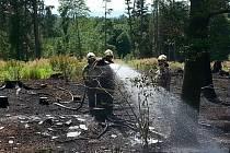 Hasiči likvidují požár lesního porostu v Dolanech na Olomoucku.