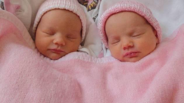 Viktorie a Štěpánka Křesinovy, narozeny 4. ledna v Olomouci, míra 50 cm a 50 cm, váha 2420 g a 2530 g.