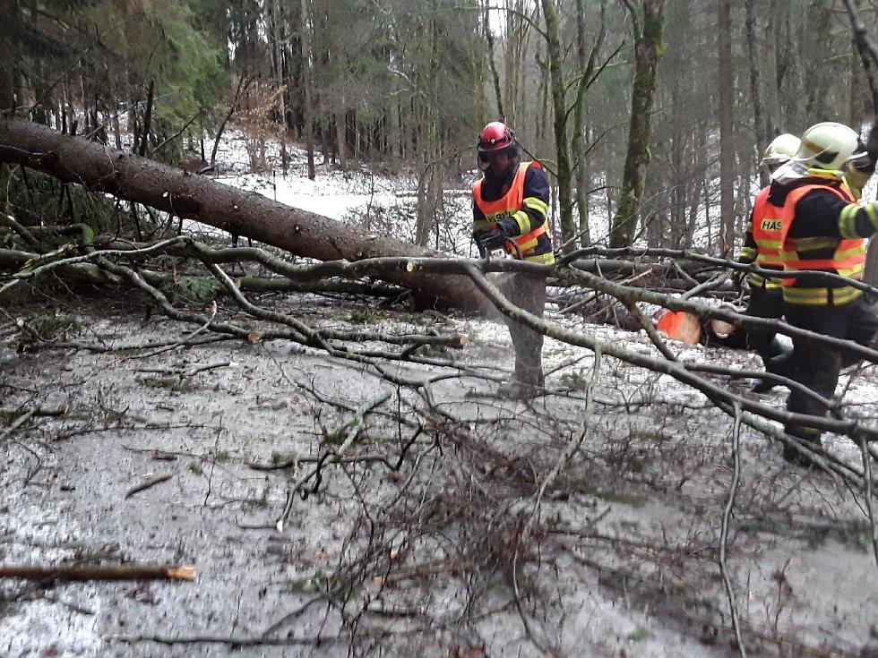 Následky orkánu Sabine v Olomouckém kraji - úterý 11. 2. 2020 - popadané stromy v Hanušovicích