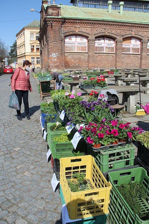 Olomoucká tržnice v pondělí 12. dubna 2021