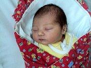 Tina Smitalová, Litovel, narozena 2. října ve Šternberku, míra 50 cm, váha 3070 g