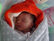 Amálie Polanská, Olomouc, narozena 7. ledna, míra 51 cm, váha 3430 g