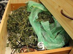 Při domovní prohlídce u zadrženého dealera z Olomoucka zajistili kriminalisté věci související s nelegální distribucí drogy.