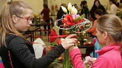 Příprava exponátů do floristické soutěže v rámci Flory Olomouc 2017