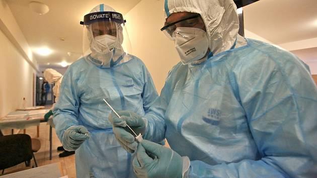 Antigenní testy na koronavirus. Ilustrační foto