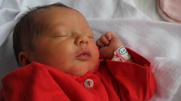 Helena Popelková, Prostějov, narozena 17. února, 49 cm, 2750 g