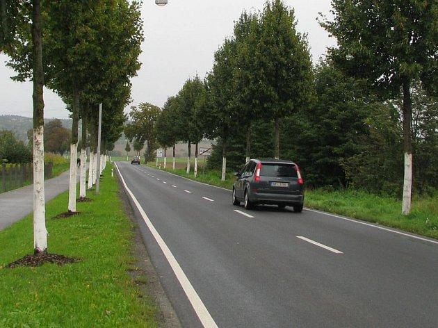 Bezpečnost v aleji mezi Olomoucí a Samotiškami zvýšilo hned několik prvků. Kromě nového značení či naváděcích bodů také bíle natřené kmeny stromů.