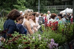 Letní etapa mezinárodní květinové a zahradnické výstavy Flora Olomouc, 19. srpna 2021.