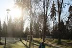 Hlavně prací se v sobotu 3. prosince dopoledne zahřívali lidé v Rudolfově aleji Smetanových sadů v Olomouci. Pomáhali tam sázet lípy velkolisté a zároveň se tak podíleli na dokončení plánované obnovy aleje.