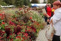 Podzimní Flora Olomouc 2019