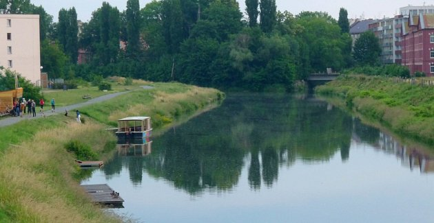 Na řece Moravě vOlomouci by mezi loděnicí uVŠ kolejí a soutokem sBystřicí mohly vzniknout přístupné ostrovy