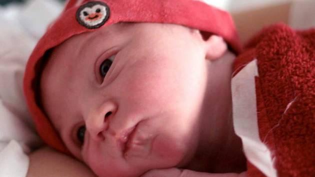 Bonifác Jung, narozen 15. září v Olomouci, míra 53 cm, váha 3630 g.