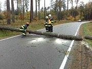 Odstraňováním následků silného větru v Olomouckém kraji.